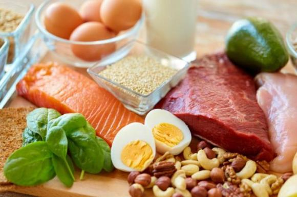 protein-options-for-muscle-protein-synthesis-compressor